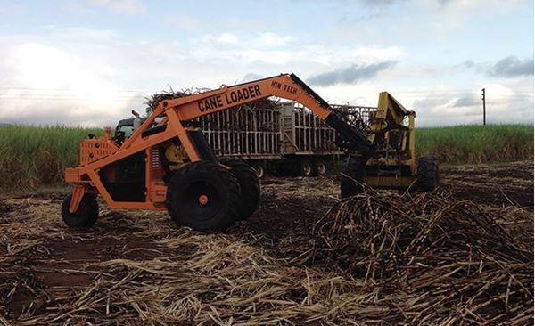 Picture of Sugar Cane Machine